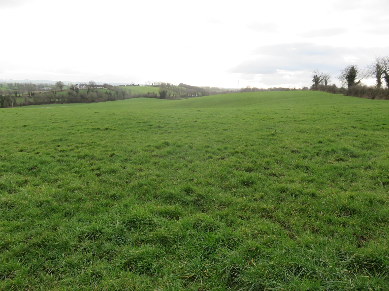 EDENBRONE, SCOTSTOWN, CO. MONAGHAN
