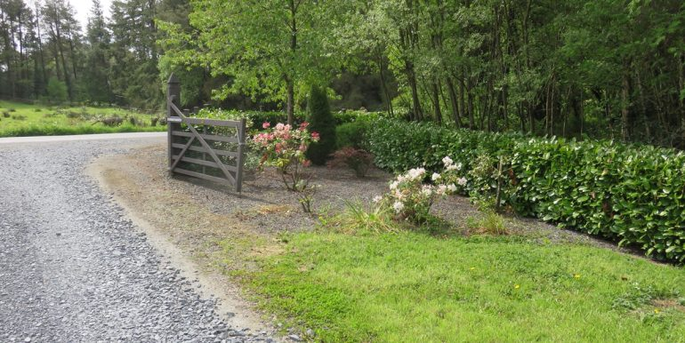 garden bed at the road 1