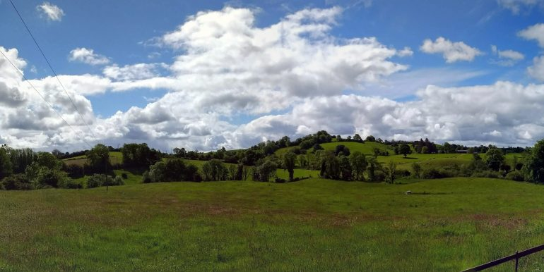 Killykeeragh grazing field 4 (002)