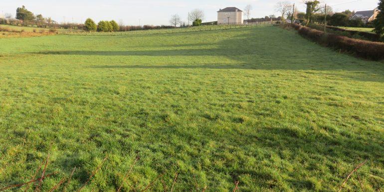 Lot 1 field 2